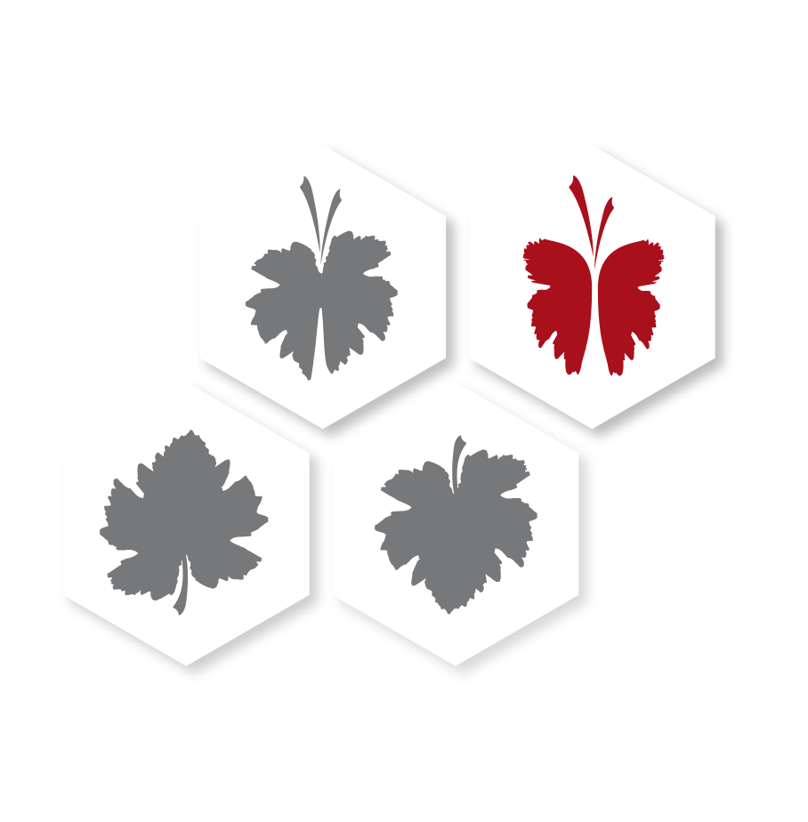 Meloni vini - vino biologico